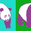 Purple Panda Apparel
