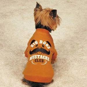 Image of Zack & Zoey Big Dogs Mustache Club Dog T-Shirt - Orange