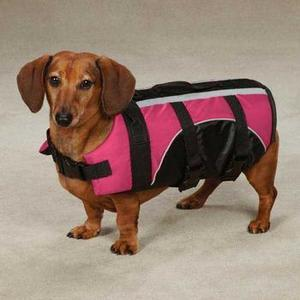 Image of Guardian Gear Brite Pet Preserver - Raspberry