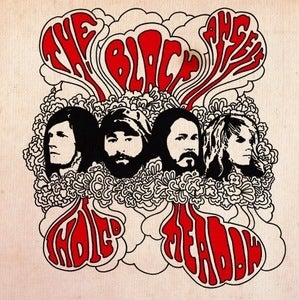 Image of THE BLACK ANGELS | INDIGO MEADOW LP