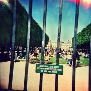 Image of TAME IMPALA | LONERISM LP