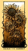 "Image of ""Bloom"" Sunflower Poster (ROLLED)"