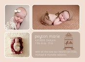Image of Peahead Prints: Simply Stated Birth Announcement Template 1