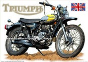 Image of 1974_Triumph_Adventurer_500_TR5T_scrambler_motorcycle_art_poster