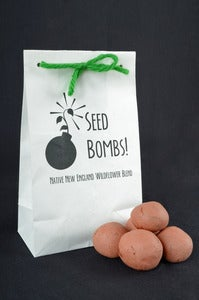 Image of Seed Bombs