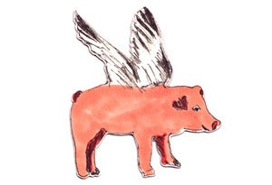 Image of Flying Pig magnet