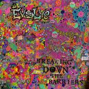 "Image of EVOLVE ""BREAKING DOWN THE BARRIERS"" LP/CD/zine"