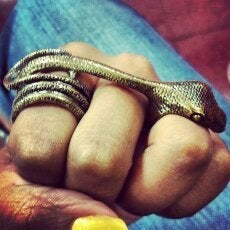 Image of 3 Finger Snake Ring
