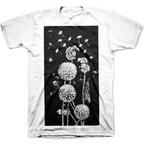 Image of DANDELIONS pre-order tee shirt