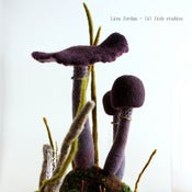 Image of SOLD  the darker corners - amethyst wool mushroom terrarium