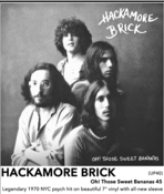 "Image of HACKAMORE BRICK - ""Oh! Those Sweet Bananas"" 7"""