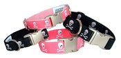 Image of Pirate Skulls - Dog Collar