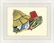 Image of Painted Turtle Print by Ryan Berkley