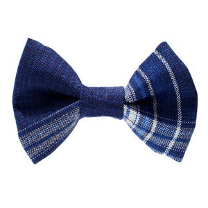 Image of Sweet Pickles' Design Bow Tie - The Watson