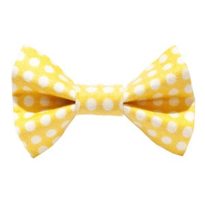 Image of Sweet Pickles' Design Bow Tie - The Fashion Designer