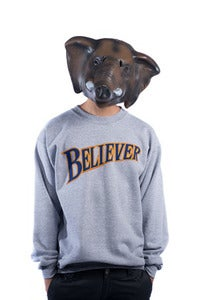 Image of Believer Crew - Grey