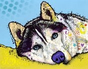 Image of Husky Special Edition - Tom and Jerry