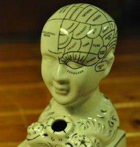 Image of Phrenology head inkwell.