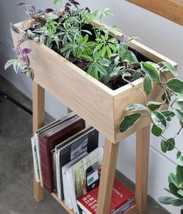 Image of White Oak Indoor Planter