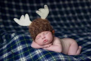 Image of Little Moose Beanie