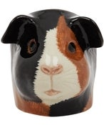 Image of GUINEA PIG EGG CUP