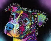Image of In a Perfect World - Limited Edition Print