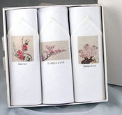 Image of Box of III Women's Hankies: Amour