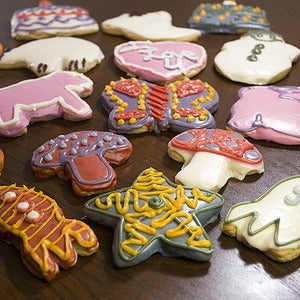 Image of sugar cut-out cookie