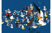 Image of Charley Harper <br>Mystery of the Missing Migrants