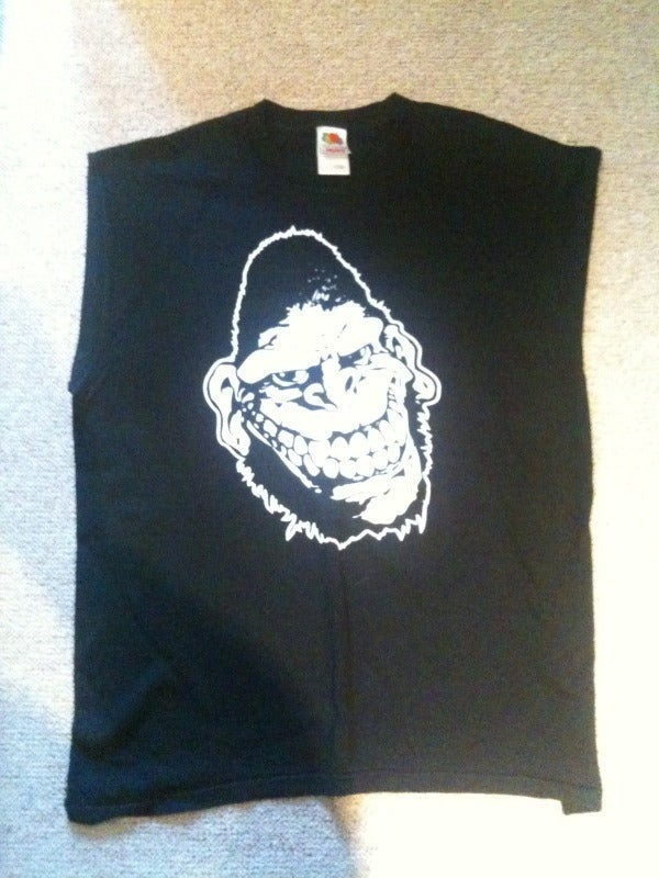 Gorilla Biscuits Tour