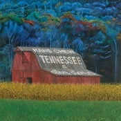 Image of Hans Chew - &quot;Tennessee &amp; Other Stories...&quot; - 12&quot; LP, w/free MP3 download coupon included