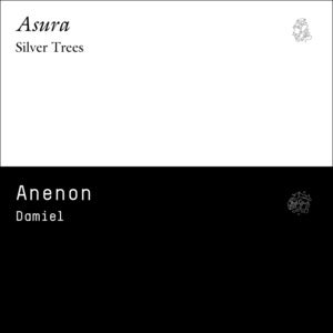 Image of Asura / Anenon - Silver Trees / Damiel Split 12&quot; Clear Vinyl (NON12001) - free mp3&amp;#x27;s included