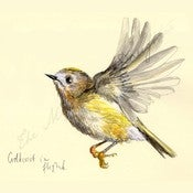 Image of Bird Watching Print - The Goldcrest in Flight