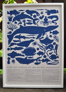 Image of Marine Animals Print - Pacific Northwest
