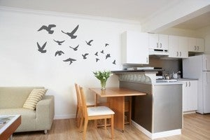 Image of Vinyl Wall Sticker Decal Art - Fly Away Flock of Birds