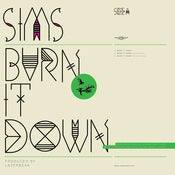 "Image of Burn It Down (12"" Vinyl) - Sims"