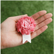 Image of CPlay Happy Flower Carnation