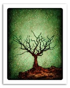 "Image of 8x10"" Paper Print - Solo Series - Dormant Tree 1"