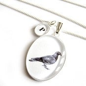 Image of P is for Pigeon Necklace