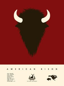Image of American Bison