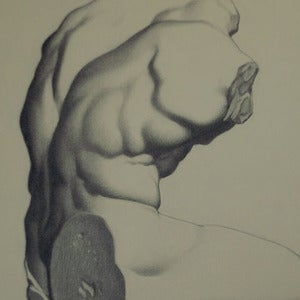 Image of Belvedere Torso