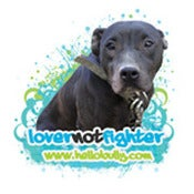 Image of Lover Not Fighter Dog - Teal Graphics