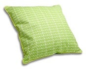 Image of Apple & Lime Green Cushion