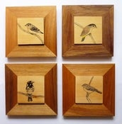 Image of Art on wood -  framed bush birds
