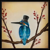 Image of English Gentleman #3 (King Fisher)