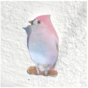 Image of StandardNumber Bird Memo