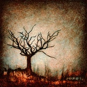 "Image of ""Drip Tree Dormant 1"" <br>Sizes: 4x4"", 6x6"", 8x8"", 12x12"""