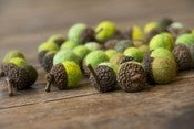 Image of SHADES OF GREEN Merino Wool Felted Acorns
