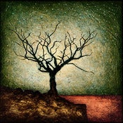 "Image of ""Horizon Tree Dormant 4"" <br> Sizes: 4x4"", 6x6"", 8x8"", 12x12"""