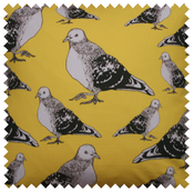 Image of pigeon fabric